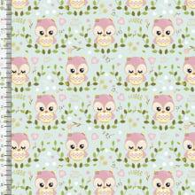 Coruja Fundo Verde BB p9100e1092 - Delicata Estúdio
