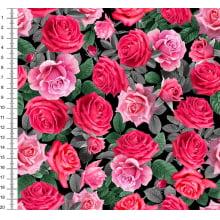 Rosas e Folhas 9100E4092