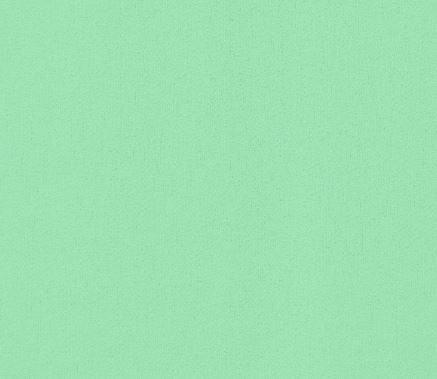 Verde Menta - Tricoline 100% Alg. lisa